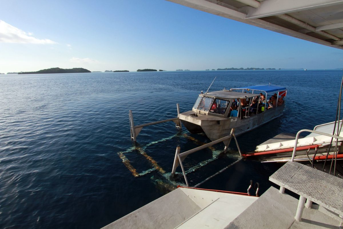 Hydraulic Lift Underwater : Palau march snorkeling etc